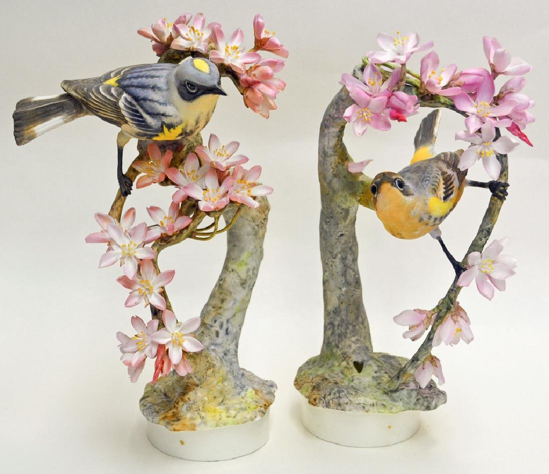 Pair Of Myrtle Warblers And Weeping Cherry