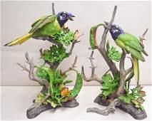 "Boehm Porcelain ""green Jays"" Pair"