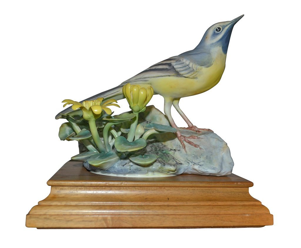 Dorothy Doughty, The Gray Wagtail And Celandine