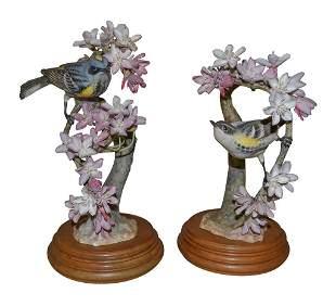 Pair Of Dorothy Doughty Birds, Myrtle Warblers