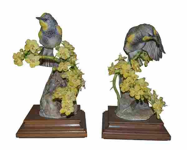 Pair Of Audubon Warbler And Palo Verdi