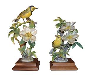 Pair Of Dorothy Doughty Hooded Warbler