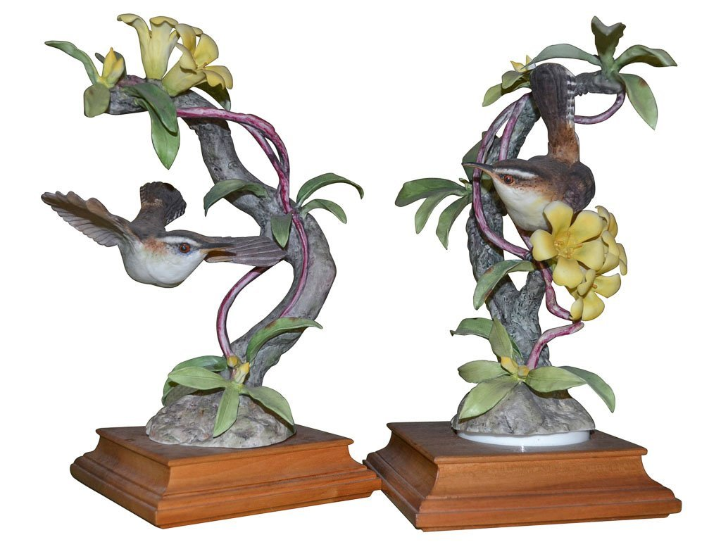 Dorothy Doughty Birds Bewick's Wren