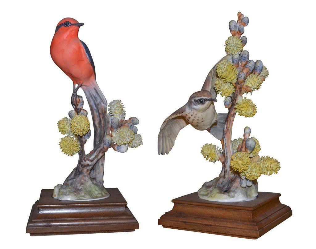 Dorothy Doughty Bird, The Vermillion Flycatcher