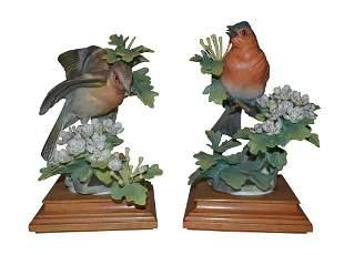 Pair Of Dorothy Doughty Birds