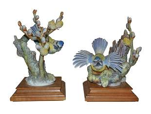 Pair Bluetit Parus & Pussywillow, By D. Doughty