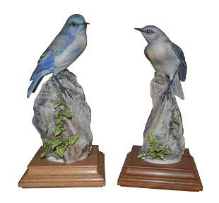Pair Of Dorothy Doughty Mountain Bluebird