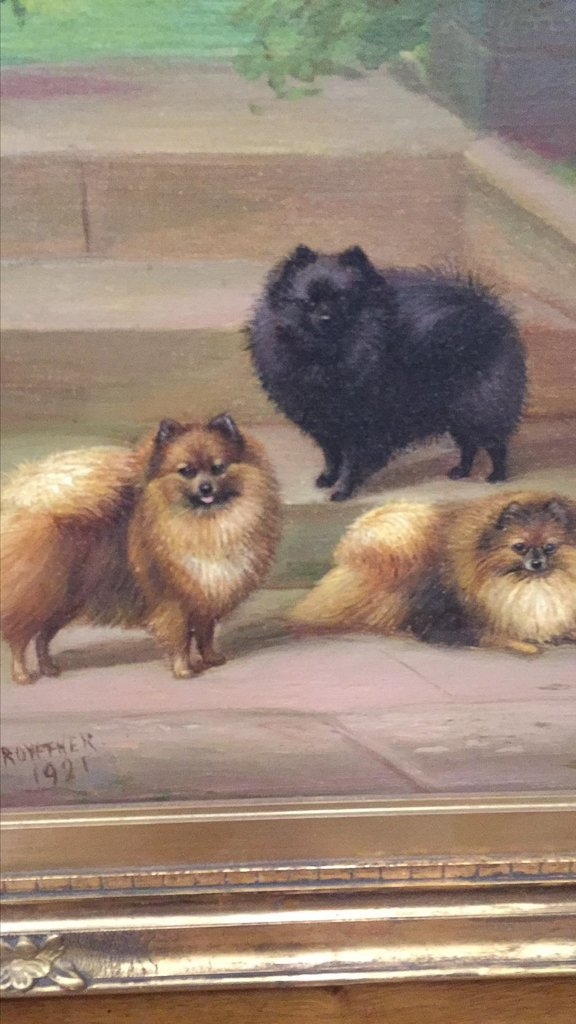 Parisian Oil On Canvas Of Pomeranians, Signed - 3