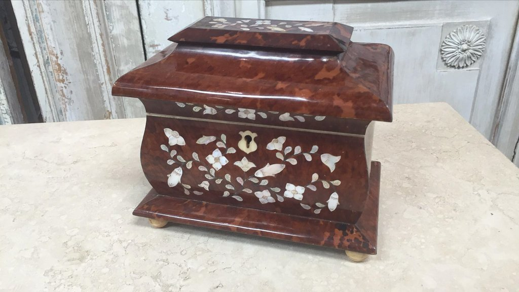 Rare English Tortoise Tea Caddy, With Mother - 2