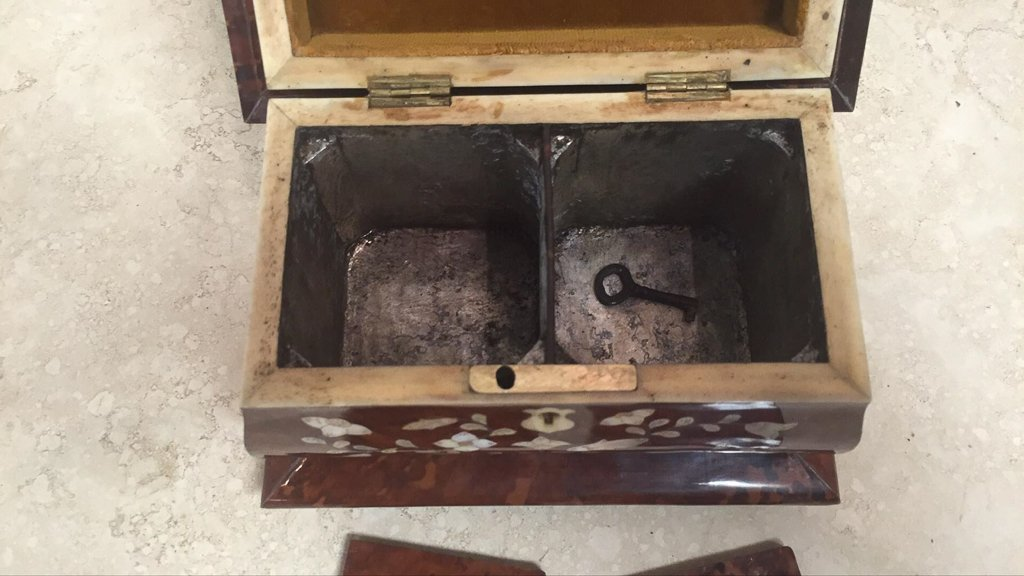 Rare English Tortoise Tea Caddy, With Mother - 7