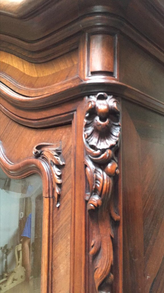 19th C French Walnut And Rosewood Carved Cabinet - 5
