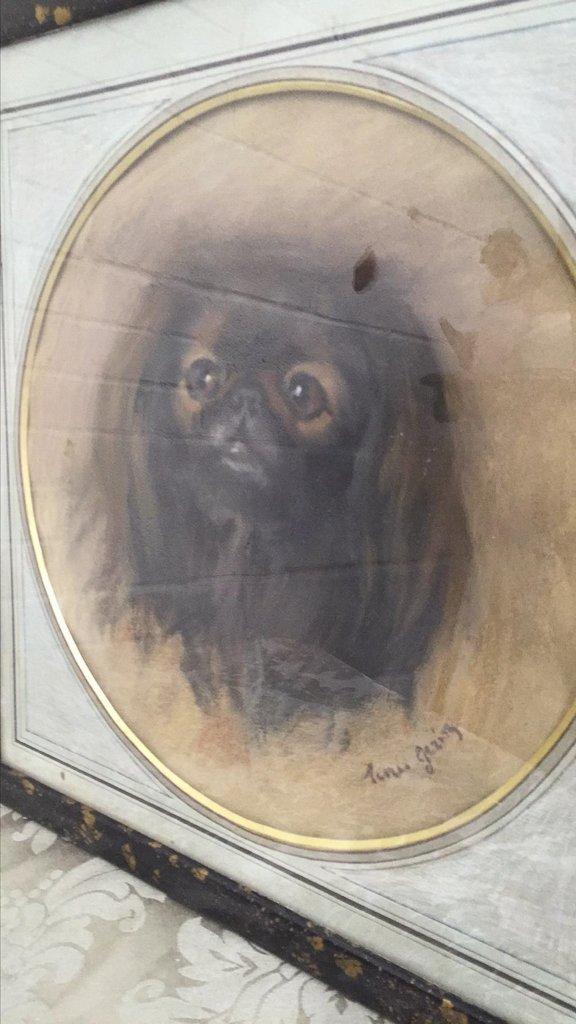 Pr Parisian Framed Charcoal Spaniel Portraits, - 3