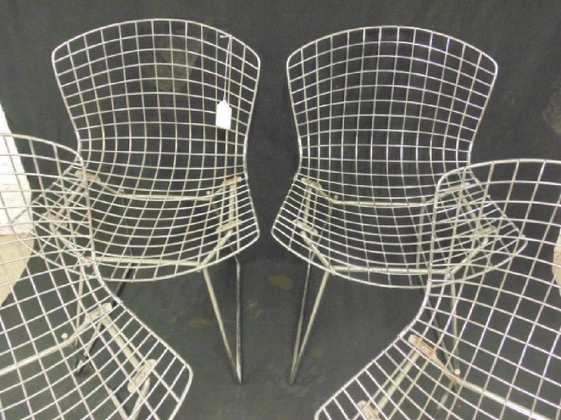 Set 4 Steel wire frame chairs by Bertoia - 2