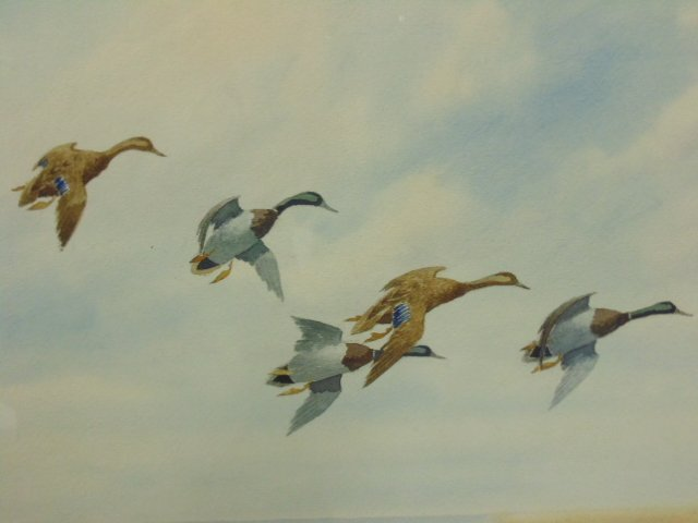 "Watercolor, ""Mallards Slanting Down"", Joseph Day Knap - 2"