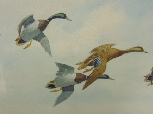 "Watercolor, ""Mallards Slanting Down"", Joseph Day Knap - 3"