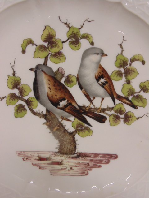 2 Meissen plates, hand painted with birds & insects - 4