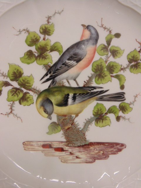2 Meissen plates, hand painted with birds & insects - 6