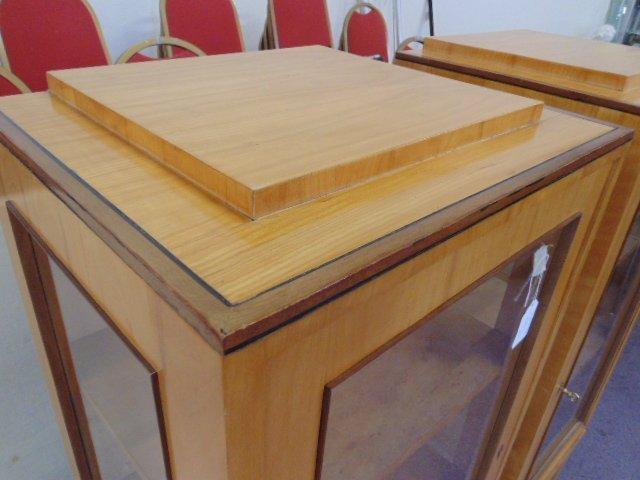 Pair Biedermeier cabinets - 3