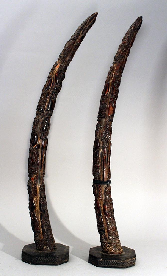 Pair of African horns