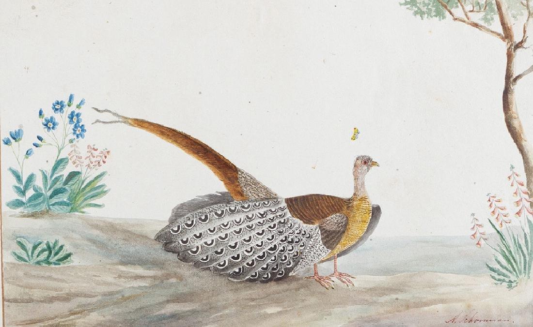 Aert Schouman (1710 – 1792) - 2