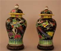 Pair of Chinese porcelain vases in Familie Noir manner,