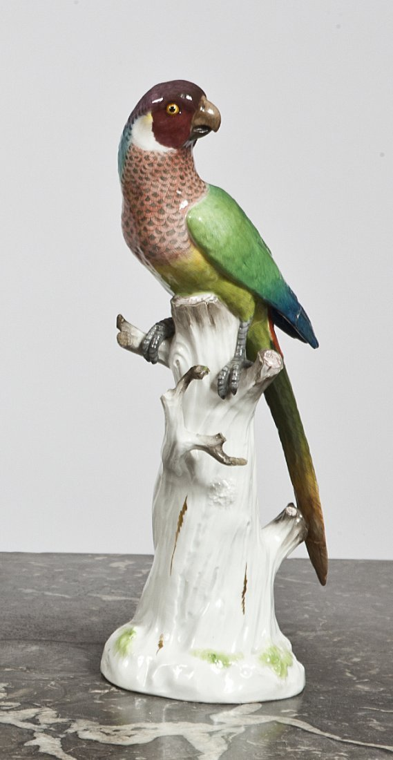 8: A Meissen model of a South American Parrot,