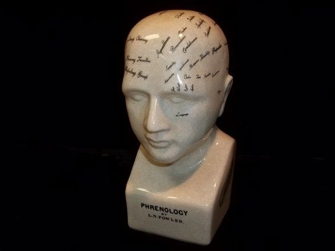 188: LN Fowler Phrenology Head Bust