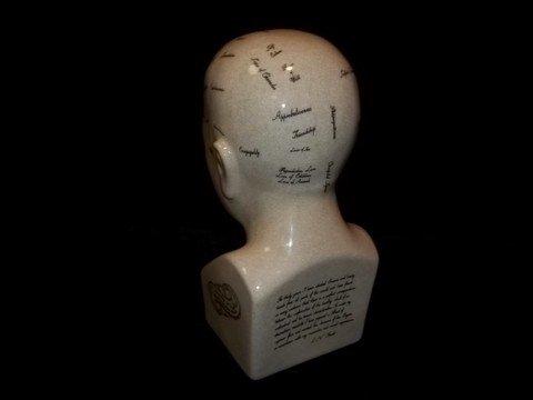 188: LN Fowler Phrenology Head Bust - 2