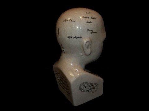 188: LN Fowler Phrenology Head Bust - 3