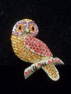 48: Great Rhinestone Owl Brooch