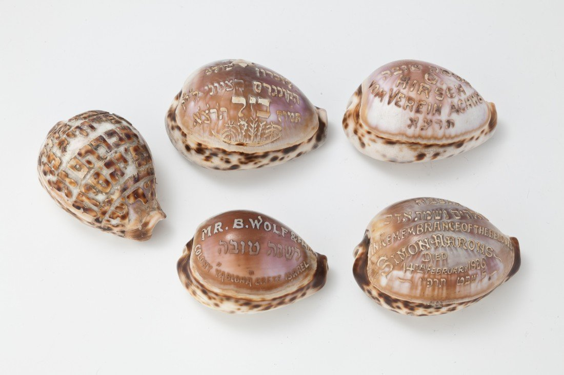 1: A COLLECTION OF 5 CARVED JUDAIC SHELLS. Early 20th c