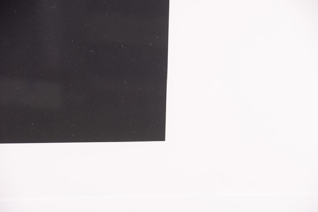 "ELLSWORTH KELLY: ""TWO WHITES & BLACK"" - 4"