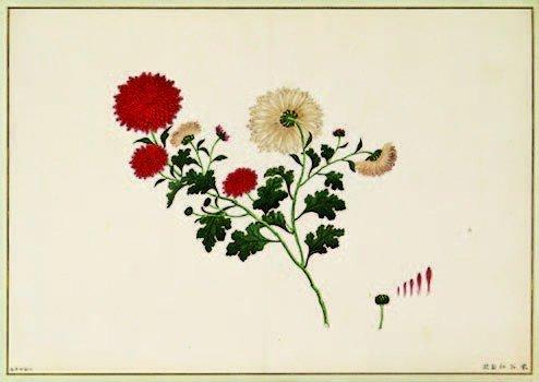 12: 19th century, Chinese Artist Unknown