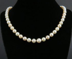 Ladies Graduated Pearl Necklace With 10 Karat Yellow