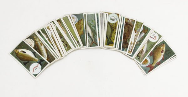 Fifty (50) Fish and Bait Wills's Cigarette Cards. Good
