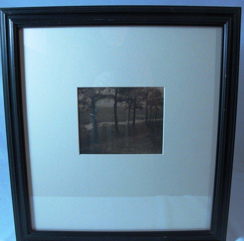 """201: Framed 1909 C. Yarnall Abbott Photogravure """"Sentin"""