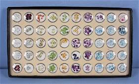Loose Gemstone Collection 250  w  Display Tray