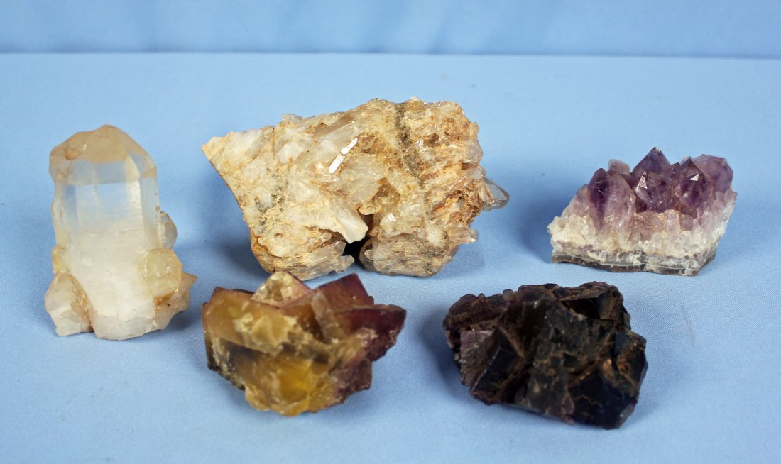Collection of Fossils and Quartz - 6