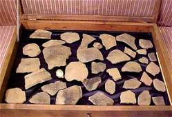 19: INDIAN ARTIFACTS from the Tugaloo River Dig of 1957