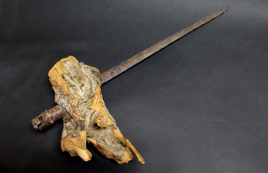 Excavated Bayonet Embedded in a Tree Root