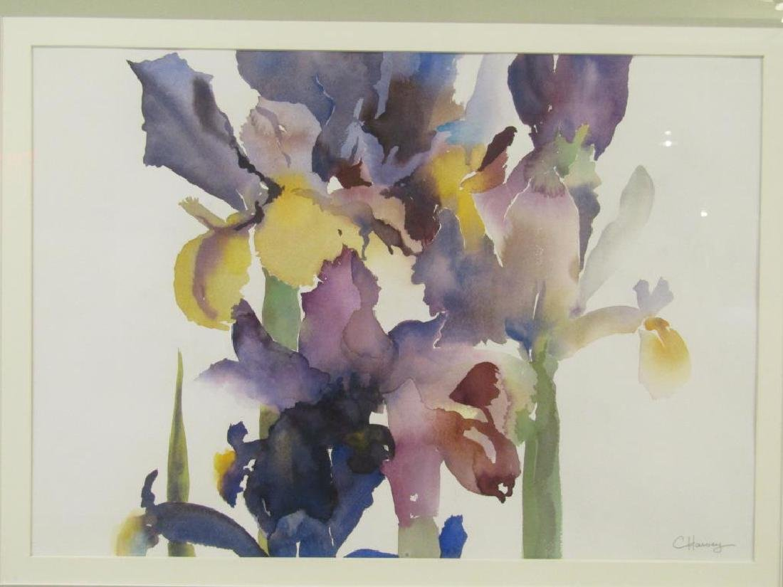 Constance Harvey - 2 Watercolors - 2