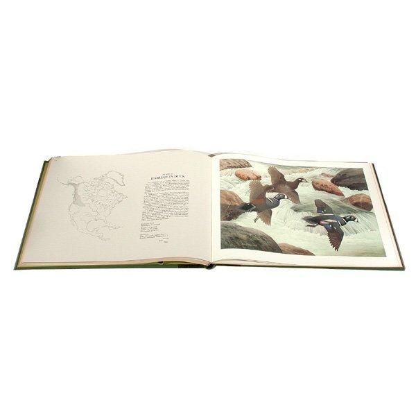 15: Book Waterfowl of North America, Zimmerman