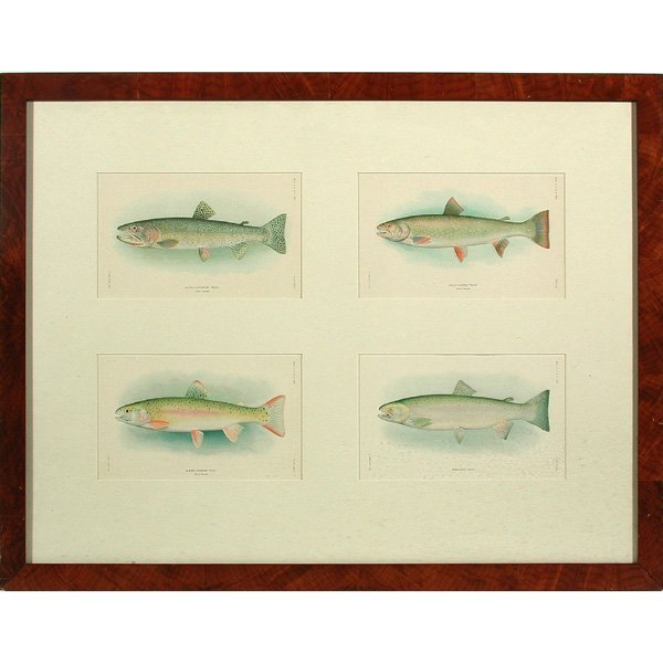 17: Framed Hoen Bookplates, Trout