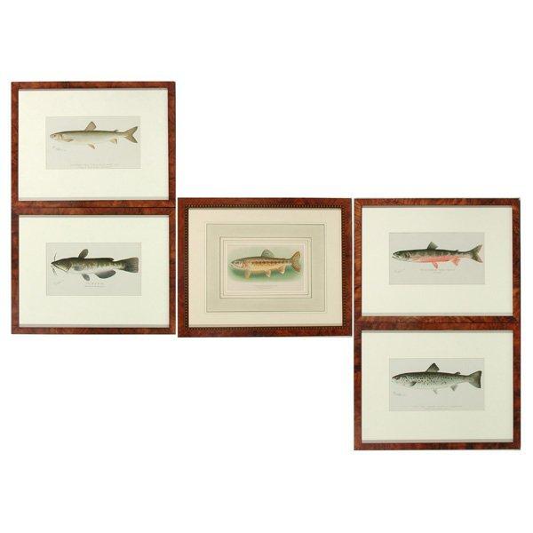18: Group of Five Denton Trout Prints