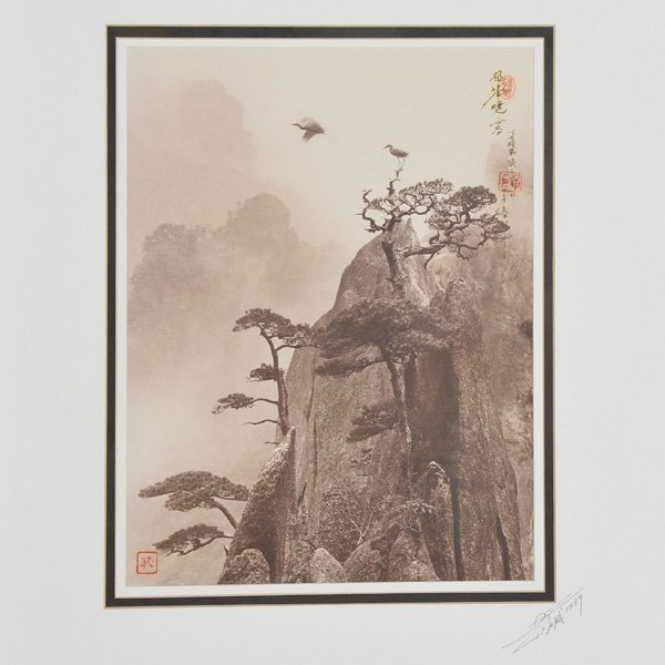 "Don Hong Oai, Photograph, ""Pine Peak, Yellow Mountain"""