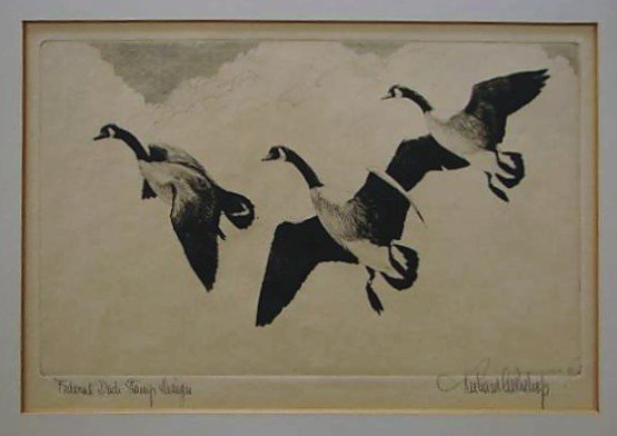 48: Nine (9) EARLY Migratory Federal Duck Stamp Prints - 2