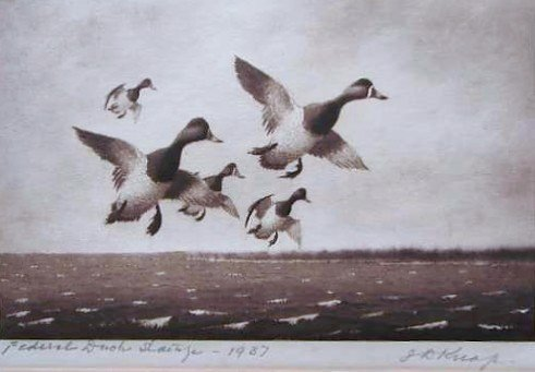 48: Nine (9) EARLY Migratory Federal Duck Stamp Prints - 3