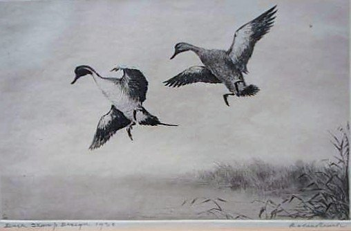48: Nine (9) EARLY Migratory Federal Duck Stamp Prints - 4