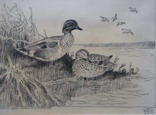48: Nine (9) EARLY Migratory Federal Duck Stamp Prints - 5