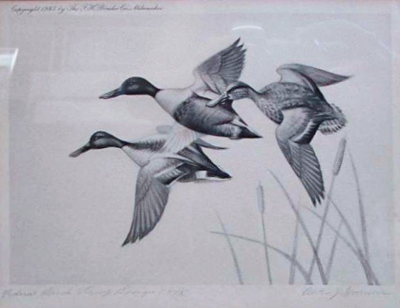 48: Nine (9) EARLY Migratory Federal Duck Stamp Prints - 8